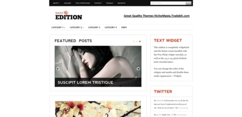 Pay for Premium Wordpress Theme Daily Edition
