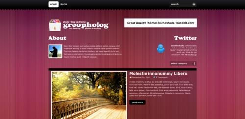 Pay for Premium Wordpress Theme Groovy Photo