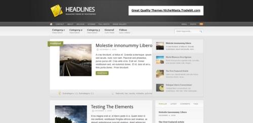 Pay for Premium Wordpress Theme Headlines