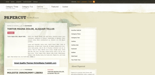Pay for Premium Wordpress Theme Papercut