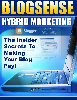 Thumbnail BlogSense hybrid Marketing