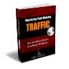 Thumbnail Maximizing Your Website TRAFFIC  - PLR eBook