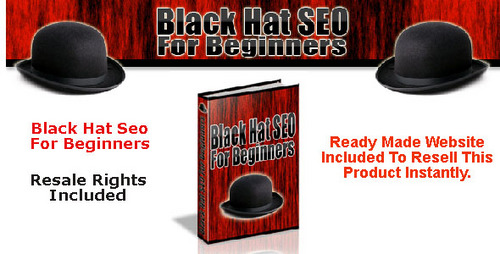 Pay for Black Hat SEO For Beginners (Resale Rights included)