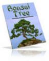 Thumbnail **New** Bonsai Tree
