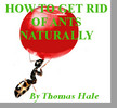 Thumbnail How To Get Rid of Ants Naturally