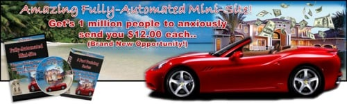 Pay for 6 dollar millions minni website business