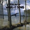 Thumbnail Pepe Maina - Whale Song -