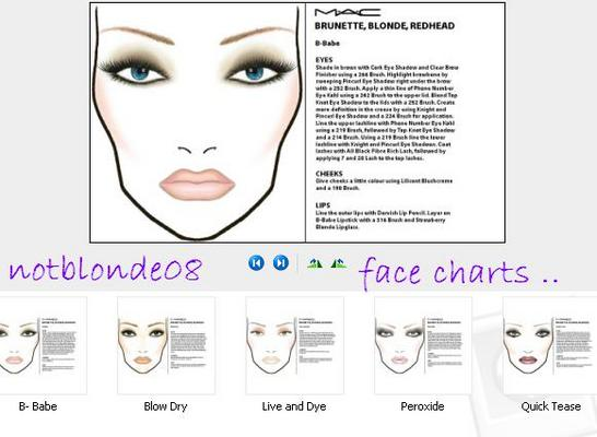Pay for MAC Cosmetics Face Charts and Pre - Launched Looks