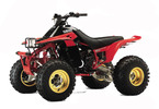 Thumbnail 1992-2004 Yamaha WARRIOR 350  Service Manual and ATV Owners Manual - Workshop Repair Download