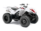 Thumbnail 2006-2010 Yamaha WOLVERINE 450 4x4 Service Manual and ATV Owners Manual - Workshop Repair Download