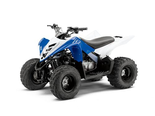 Pay for 2010 Yamaha RAPTOR 90 Service Manual and ATV Owners Manual - Workshop Repair Download