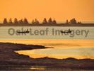Thumbnail Oyster Fishermen - Royalty Free Image