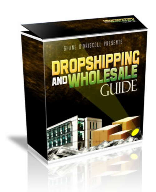 Pay for The Dropshipping & Wholesale Guide