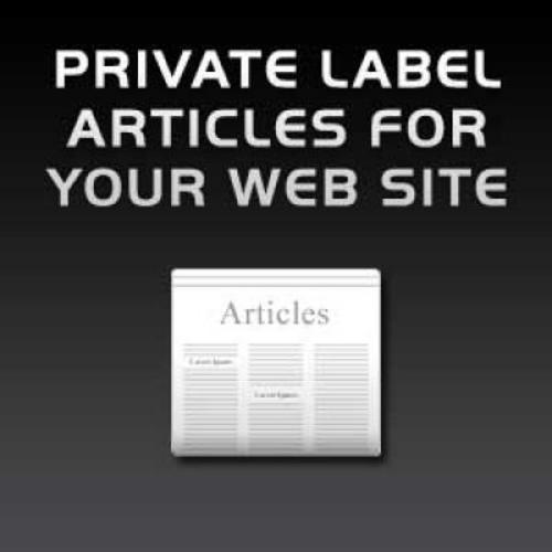 Pay for Buy Quality PLR 6000+ Articles Mega Jumbo Pack