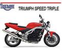 Thumbnail TRIUMPH SPEED TRIPLE 955 2002 ONWARDS BIKE REPAIR MANUAL