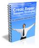 Thumbnail Credit Repair Strategies