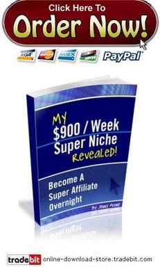 Pay for My $900/Week Super Niche Secret Revealed