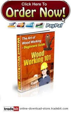 Pay for The Basics of Woodworking