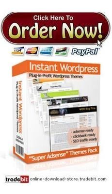 Pay for Instant Wordpress Themes