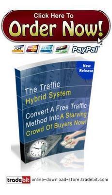 Pay for Traffic Hybrid System