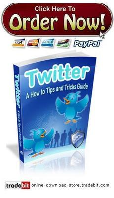 Pay for Twitter - A How To Tips And Tricks