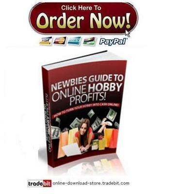 Pay for Newbies Guide To Online Hobby Profits