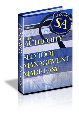 Pay for SEO Authority (MRR)