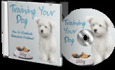 Thumbnail Training  Your Dog MRR