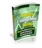Thumbnail Successful E-Entrepreneur Secrets