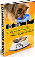 Pay for Dieting Your Dog - More Years Together with Proper Nutrition