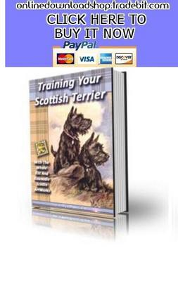 Pay for Training Your Scottish Terrior