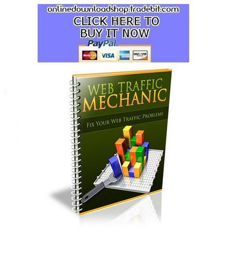 Pay for Web Traffic Mechanic