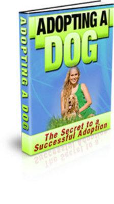 Pay for Adopting a dog PLR ebook