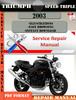 Thumbnail Triumph Speed Triple 2003 Digital Repair Manual