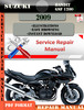 Thumbnail Suzuki Bandit GSF 1200 2009 Digital Service Repair Manual