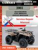 Thumbnail Yamaha ATV YFM 400 Bigbear 2003 Digital Service Repair Manua