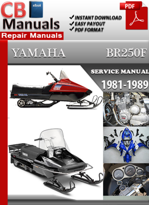 yamaha br250 1981 1989 online service repair manual. Black Bedroom Furniture Sets. Home Design Ideas