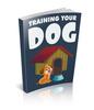Thumbnail Training Your Dog