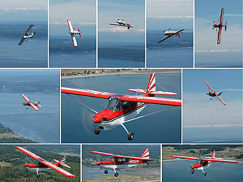 Bellanca decathlon n citabria aerobatic training manual