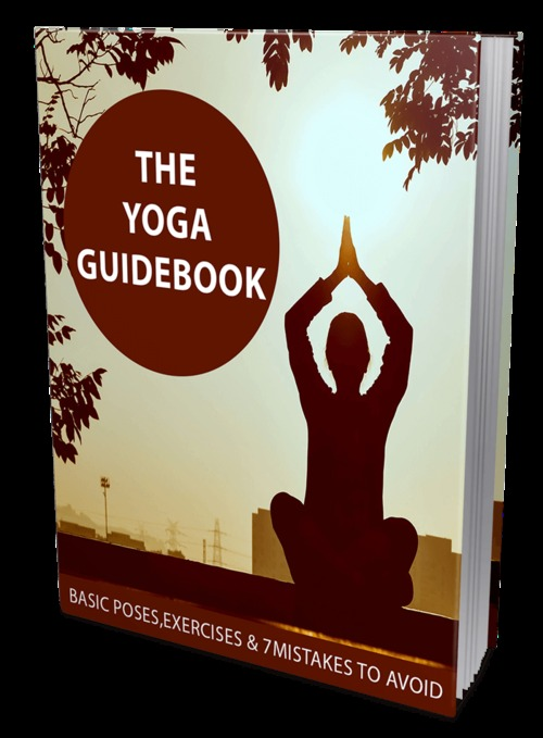 Pay for The Yoga Guidebook
