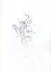Thumbnail pencil drawing image12