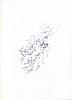 Thumbnail pencil drawing image13