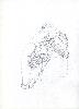Thumbnail pencil drawing image15