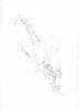 Thumbnail pencil drawing image31