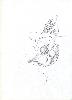 Thumbnail pencil drawing image41