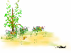 Thumbnail Peaceful Gardens 1
