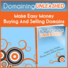 Thumbnail Domaining Unleashed - A Domain Business Blueprint