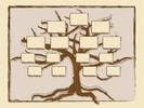 Thumbnail FAMILY TREE HISTORY GENEALOGY RECORDS SOFTWARE + BONUS