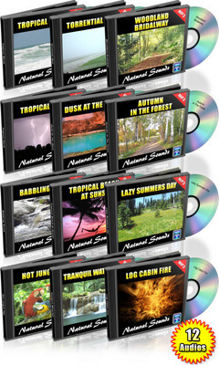 Pay for 12 HOURS OF NATURAL SOUNDS AUDIO MP3 COLLECTION MRR