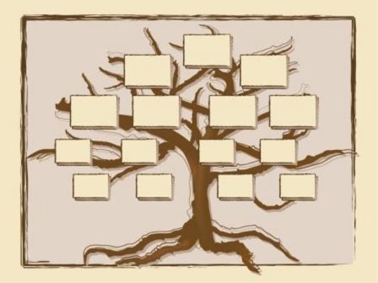 Pay for FAMILY TREE HISTORY GENEALOGY RECORDS SOFTWARE + BONUS